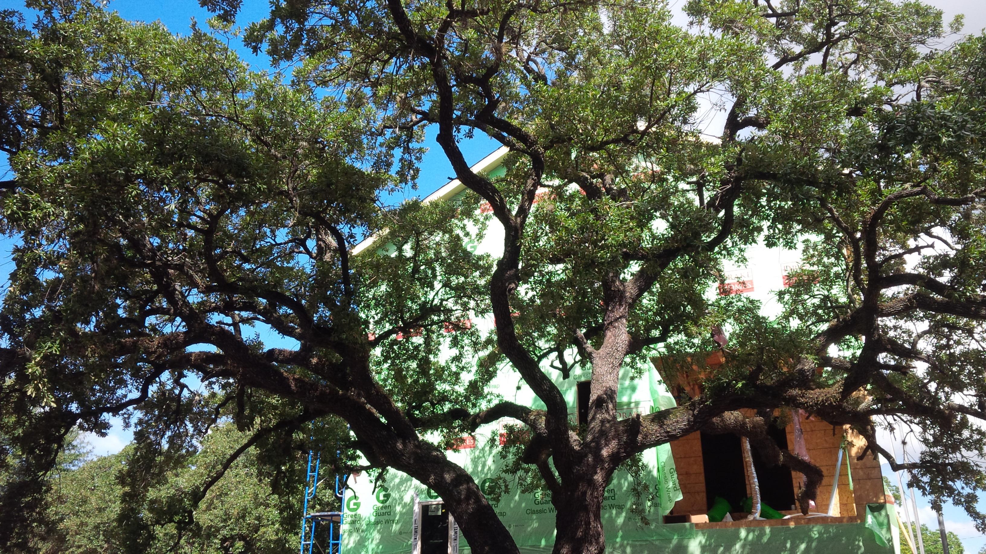 First photos avondale park avondale park manor drake for Avondale park homes