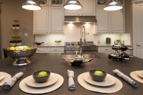 kitchen island/range