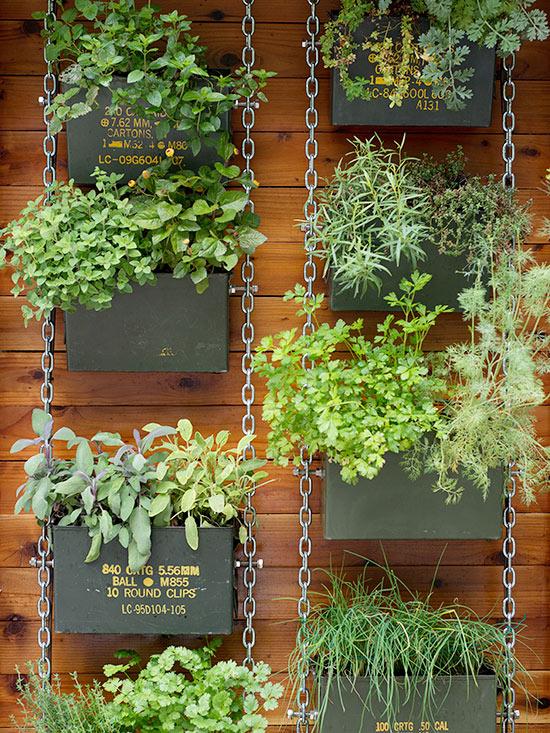 Vertical Gardening Image